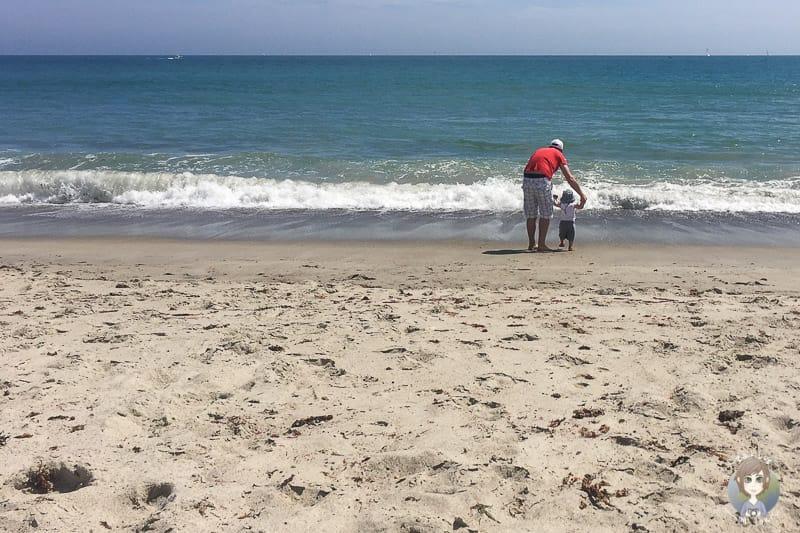 Doheny State Beach Kalifornien