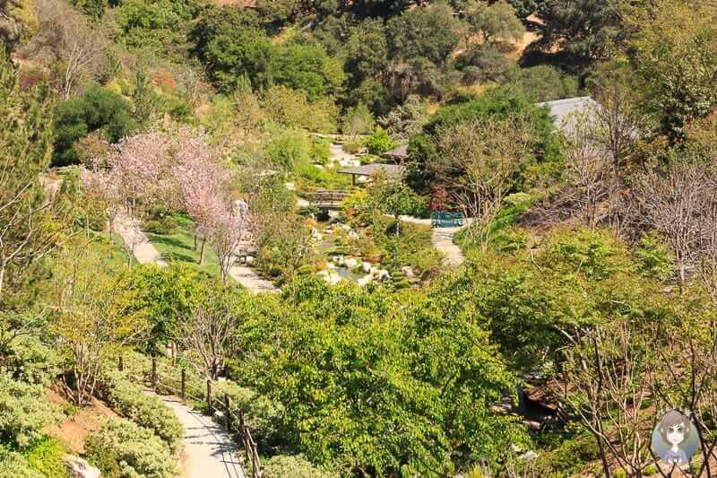 Blick in den Japanischen Garten im Balboa Park