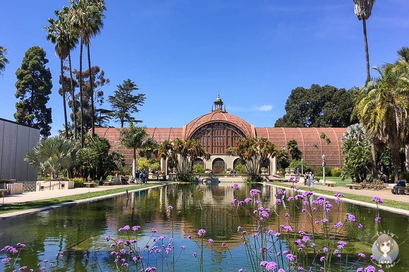 Der Lily Pond mit dem Botanischen Garten im Balboa Park, San Diego