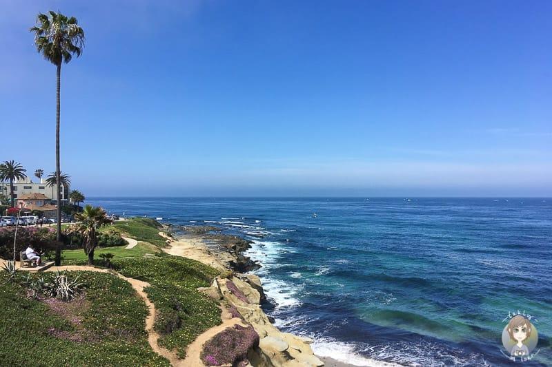 Blick über die Steilküste in La Jolla