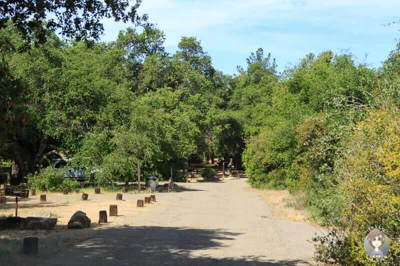 Fahrt über den El Cariso Forestcampground