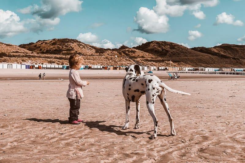 Ein Kleinkind und ein Hund beim alleine Reisen mit Kind