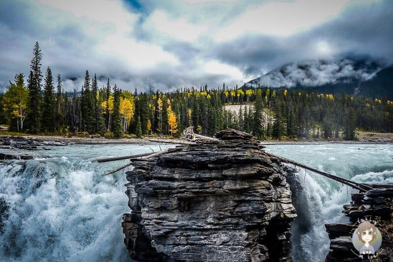 Blick auf die Athabasca Falls am Icefields Parkway im Jasper National Park Kanada