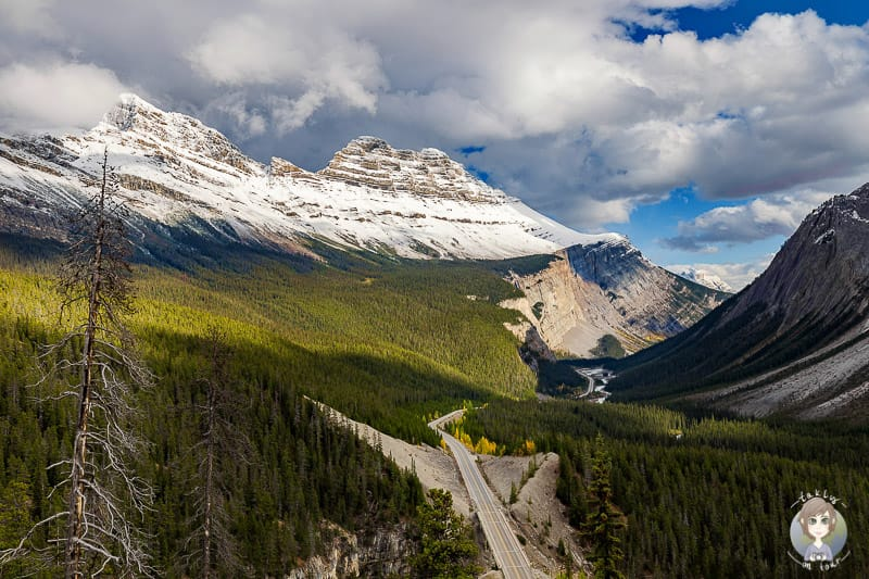 Traumhafter Ausblick vom Big Bend Viewpoint am Icefields Parkway Kanada