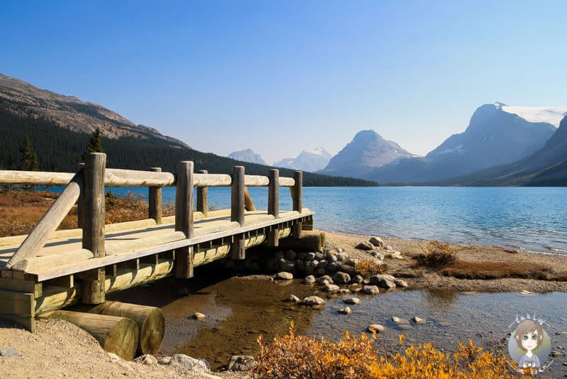 Der Bow Lake am Icefields Parkway in Kanada
