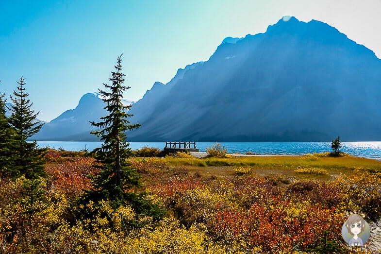 Bow Lake in Kanada im Herbst