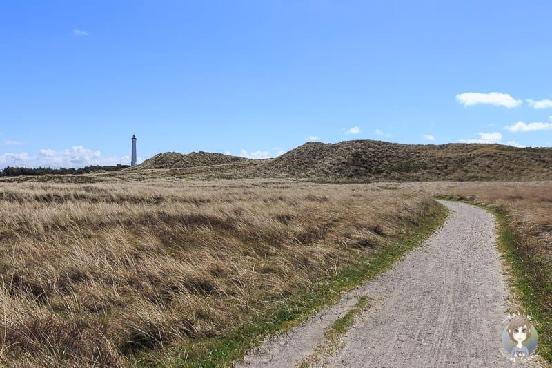 Fahrradtour zum Lyngvig Fyr