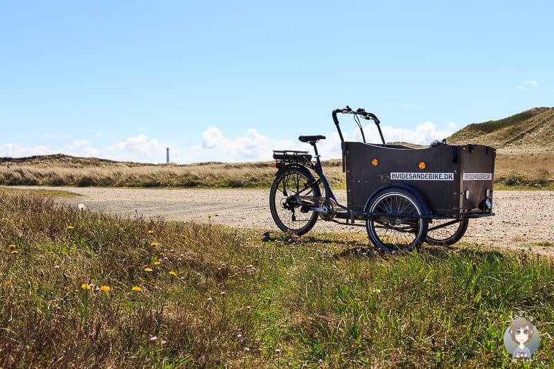 Ein Lastenfahhrad vom Fahrradverleih Hvide Sande Bike auf dem Nordseeküstenradweg Dänemark
