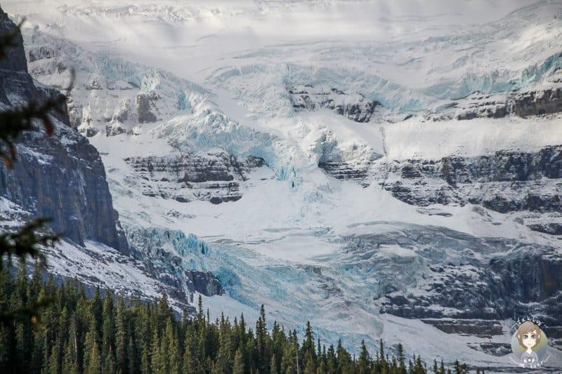 Gletscher und Schnee am Icefields Parkway