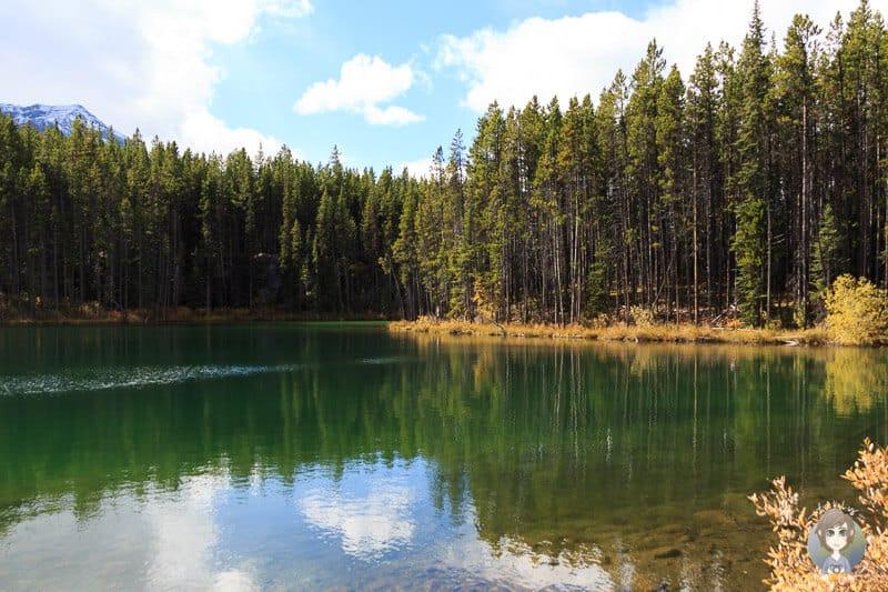 Herbert Lake am Icefields Parkway