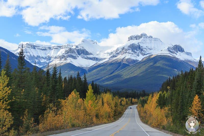 Herbst auf dem Icefields Parkway in Kanada