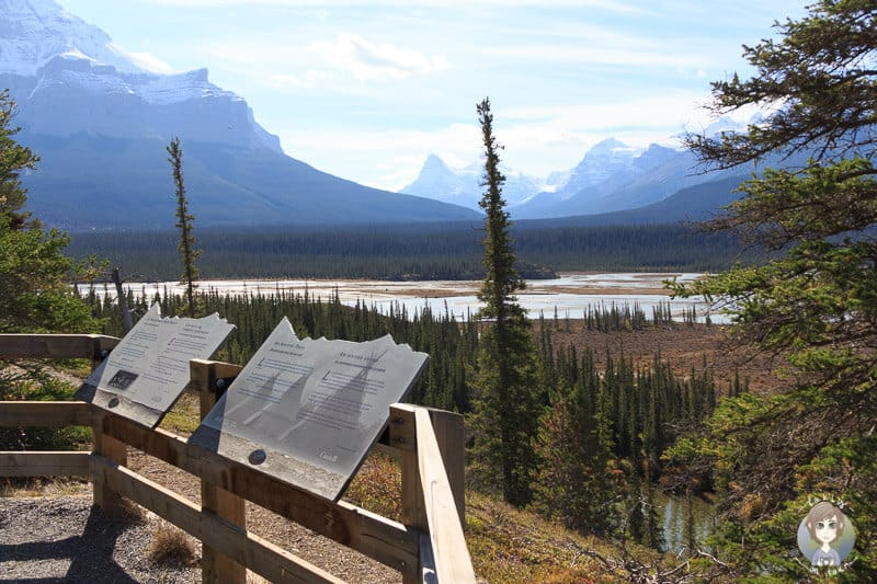 Howse Pass Viewpoint am Icefields Parkway