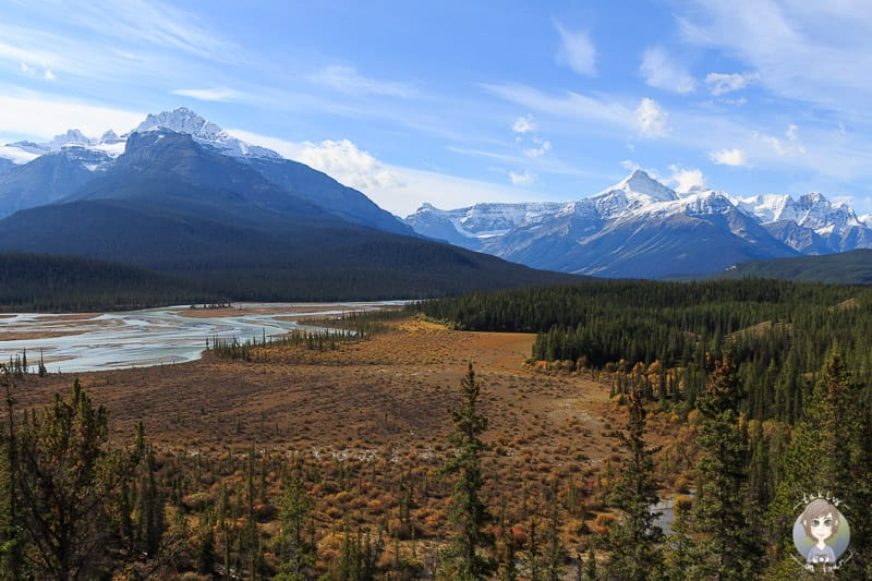 Aussicht vom Howse Pass Viewpoint am Icefields Parkway Kanada