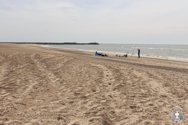 Blick über den Strand in Hvide Sande