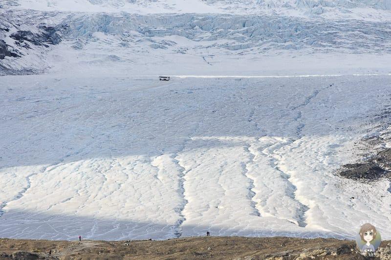 Ice Explorer auf dem Athabasca Glacier am Icefields Parkway