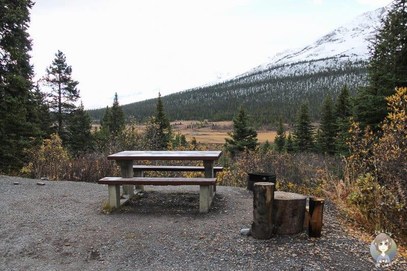 Aussicht vom Wilcox Campground auf den Icefields Parkway und die Landschaft
