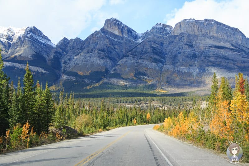 Icefields Parkway in den Rocky Mountains