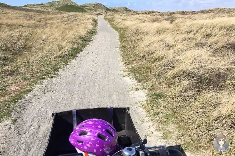 Auf dem Nordseeküstenradweg Dänemark Richtung Hvide Sande