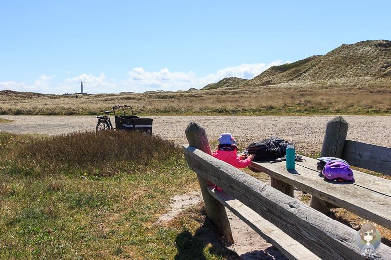 Ein Picknickplatz am Nordseeküstenradweg in Dänemark