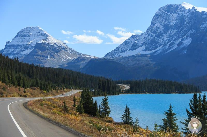 Roadtrip über den Icefields Parkway in Kanada