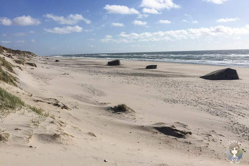 Blick über den Sondervig Strand