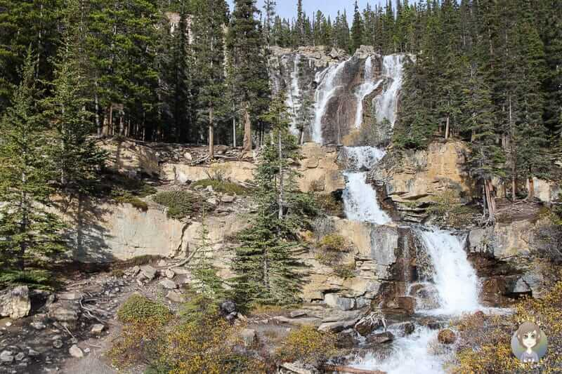 Blick auf die Tangle Falls am Icefields Parkway in Kanada
