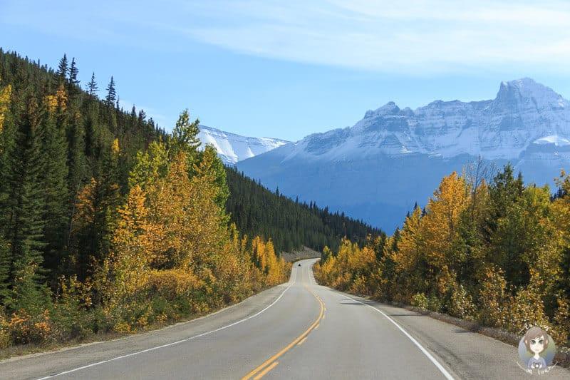 Traumstraße der Rocky Mountains in Kanada