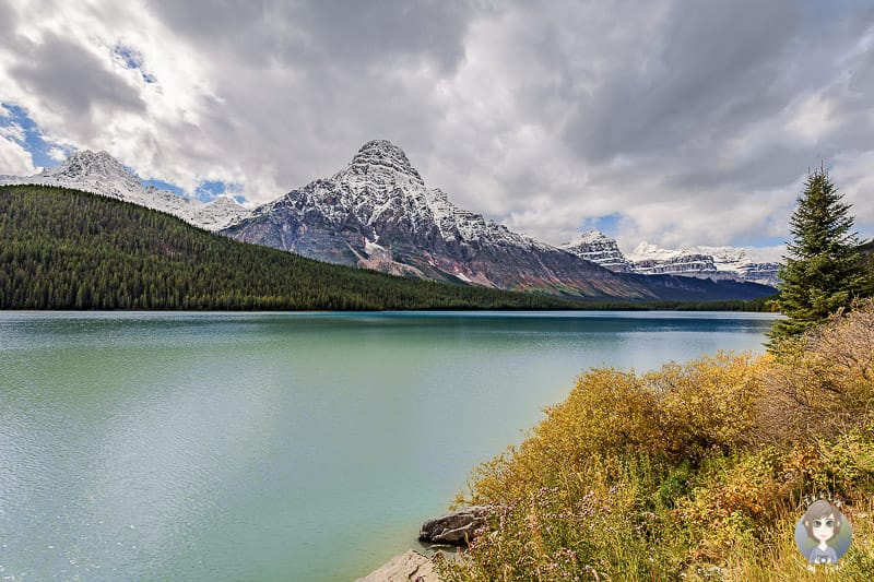 Blick auf den Waterfowl Lake am Icefields Parkway in Kanada