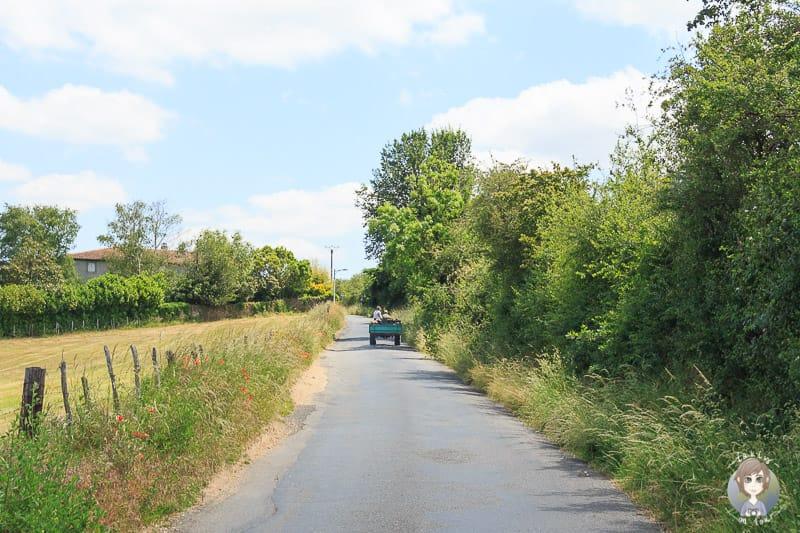 Schmale Straßen der Loire in Frankreich