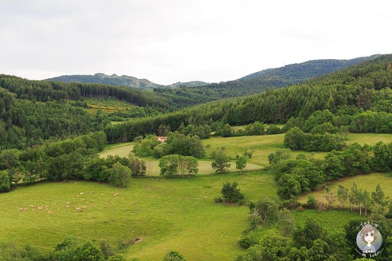Die Landschaft um Pelussin in Frankreich