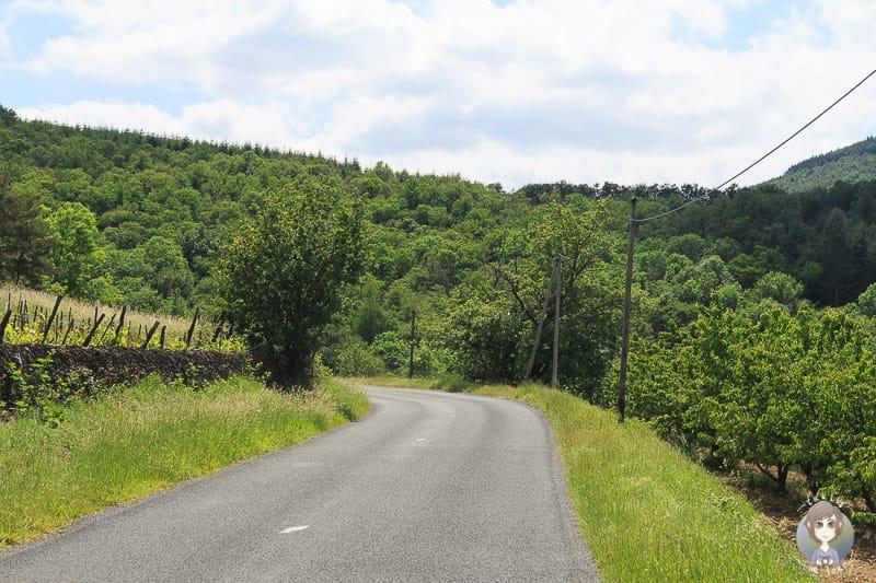 Zufahrt nach Sainte-Croix-en-Jarez