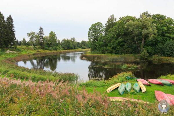 Natur und ein Fluss ist ein typische Anblick auf unserer Baltikum Rundreise