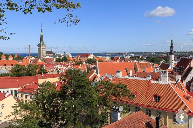Aussichtspunkt in Tallinn auf unserer Baltikum Rundreise