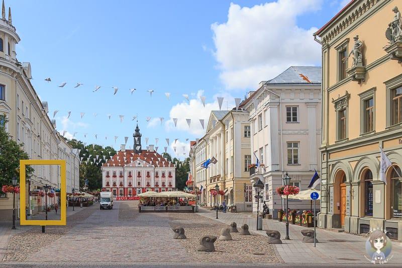 Spaziergang durch Tartu auf der Baltikum Rundreise