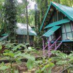 Glamping in Costa Ricas Dschungel