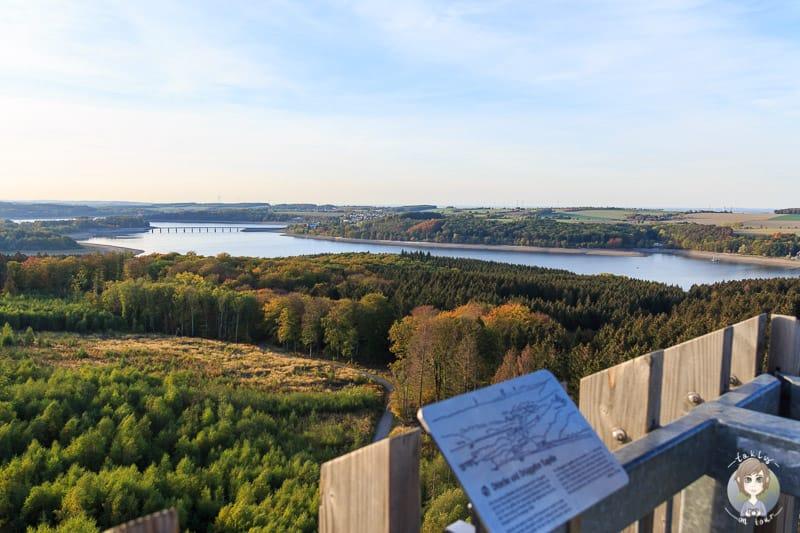 Ausblick vom Möhneseeturm beim Wandern am Möhnesee im Sauerland