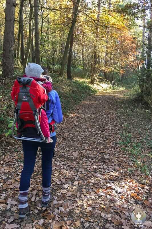 Wandern in Nideggen in der Eifel