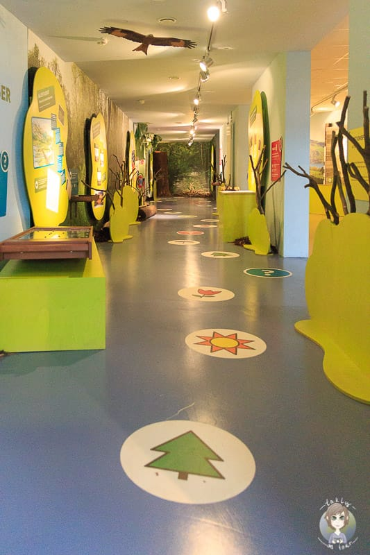 Interaktive Ausstellung im Visionarium Diemelsee