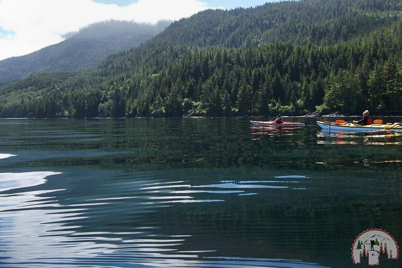Mit dem Kayak in Telegraph Cove zum Whale Watching