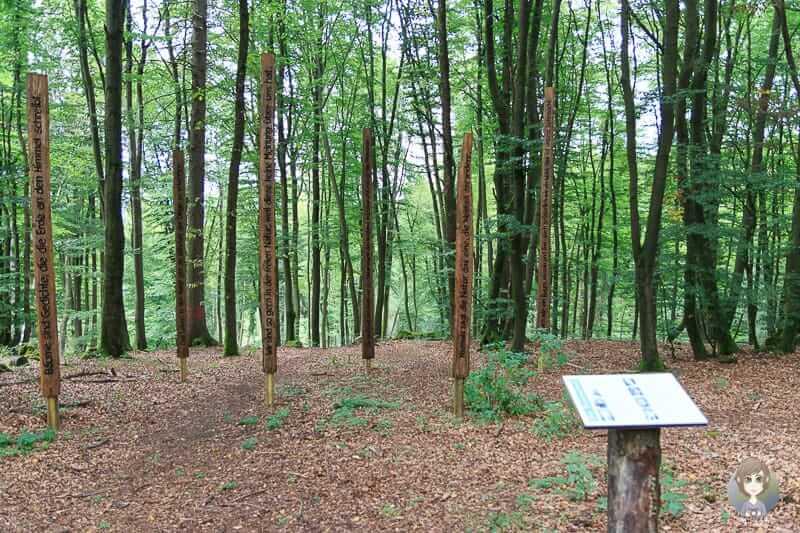 Kunstwerke auf dem KuLTour Weg am Biggesee im Sauerland