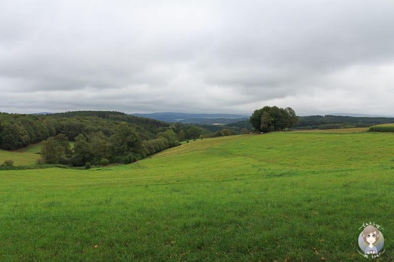 Landschaft im Sauerland in Drolshagen