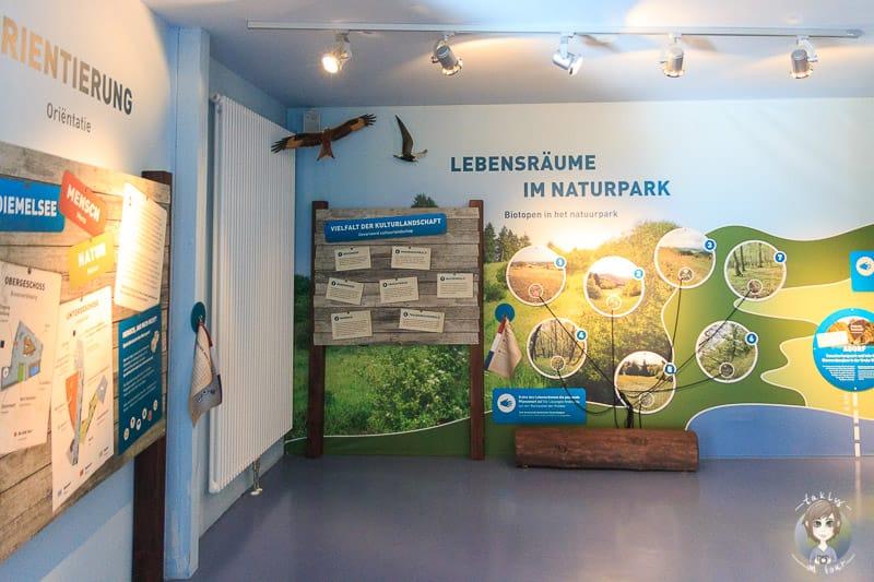 Natur-Ausstellung-Visionarium-Diemelsee