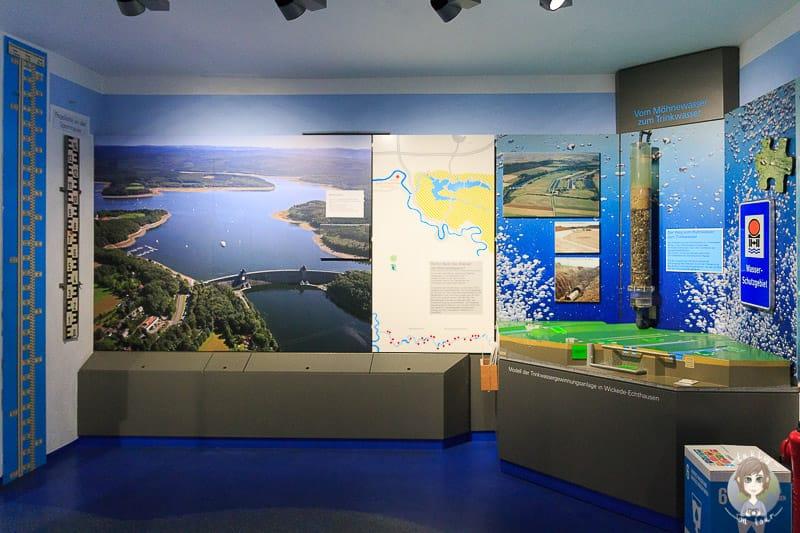 Naturausstellung im LIZ Möhnesee im Sauerland