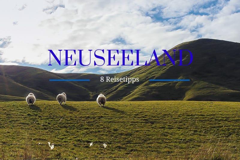 Neuseeland Reisetipps von Bloggern