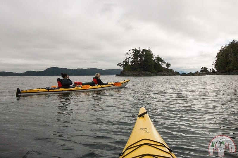 Orca Watching in Telegraph Cove im Kayak