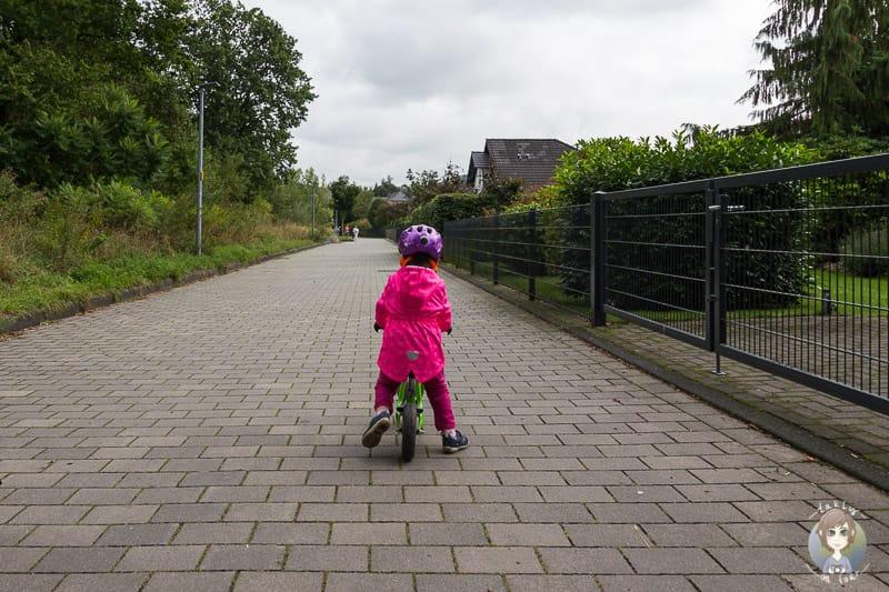 Familienfreundlich Wandern am Sorpesee im Sauerland