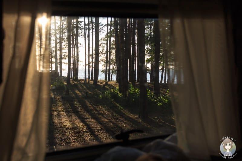 Aussicht aus dem Wohnmobil im Baltikum