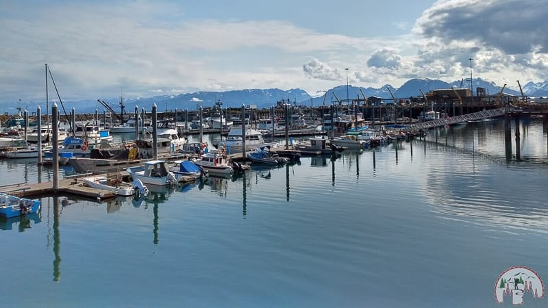 Am Hafen in Homer auf der Halbinsel Kenai in Alaska