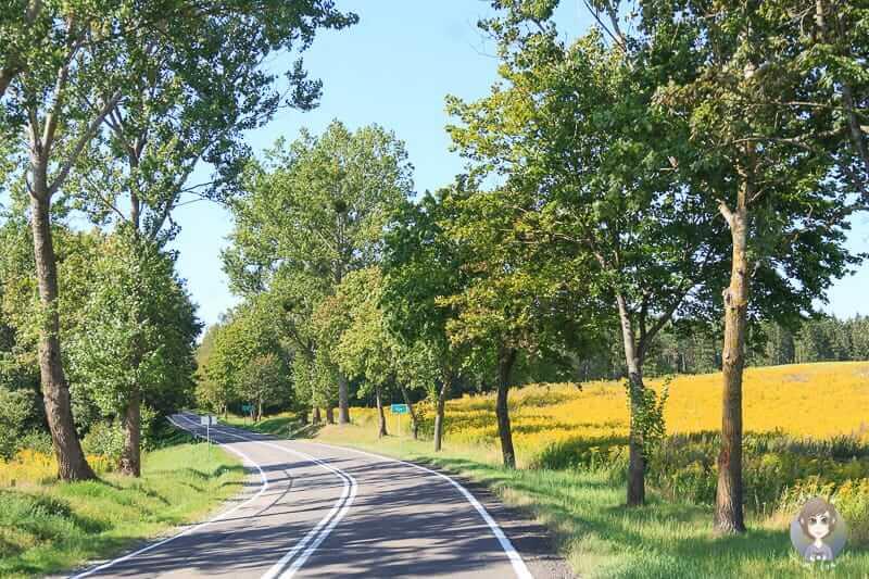 Fahrt durch Polen nach Litauen