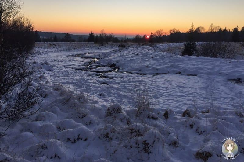 Schöner Sonnenuntergang am Mont Rigi über dem Polleur Venn